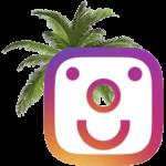 instagram expertise